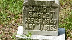 David L. Bagley