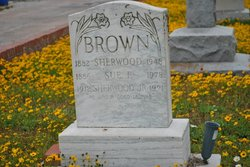 Sue F Brown