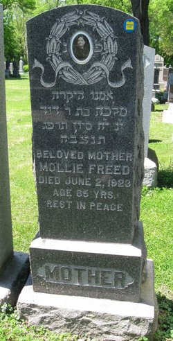 Mollie Freed