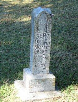 Bert Bradley