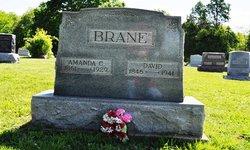 David Peter Brane