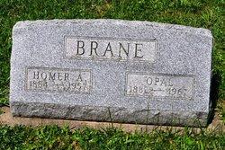 Opal <i>Jennings</i> Brane