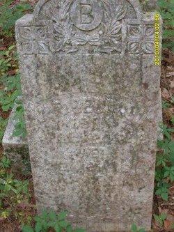 James Franklin Bedgood