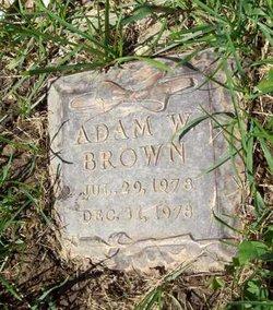 Adam W. Brown
