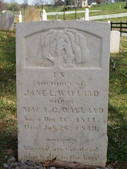 Jane Ledgerwood <i>Moffett</i> Wayland