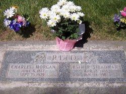 Esther Stedman <i>Owen</i> Reid