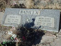 Elias A Badilla