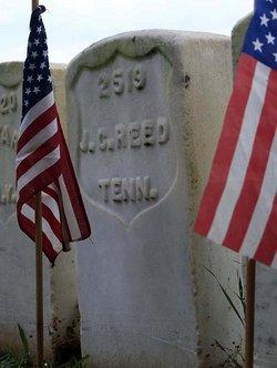John C Reed