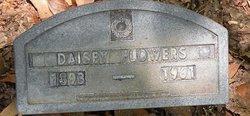 Daisey Flowers