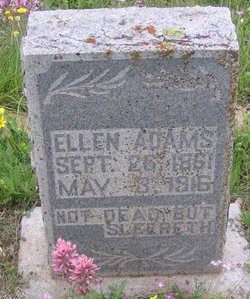 Serena Ellen <i>Warren</i> Adams
