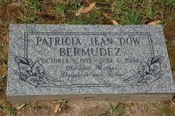 Patricia Jean <i>Dow</i> Bermudez