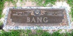 Elton Leroy Bang