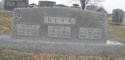Mary Polly <i>Artrip</i> Kerr