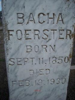Bacha <i>Schneider</i> Foerster