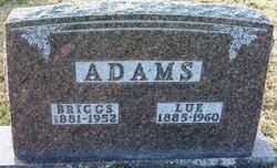 Leroy Briggs Adams