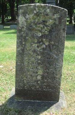 Lilly V Douglass