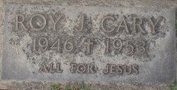 Roy J. Carey