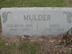 Elizabeth Ann Doll <i>Brinlee</i> Mulder