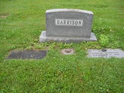 Homer Albert Harrison