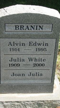 Alvin Edwin Branin