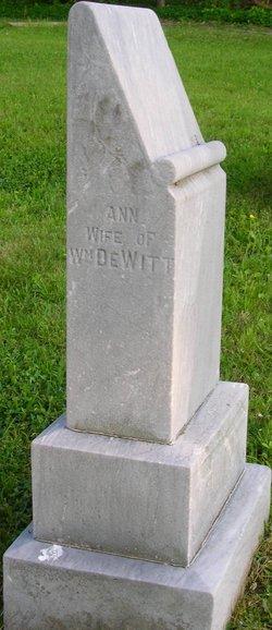 Anne Celestine Ann <i>Mattingly</i> DeWitt