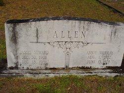 James Seward Allen