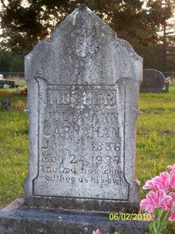 Julie Ann <i>Leach</i> Carnahan