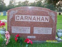 Anise Catherine <i>Condray</i> Carnahan