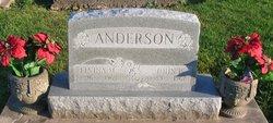 Elvina Marie <i>Eckman</i> Anderson