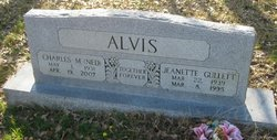 Charles M ( Ned) Alvis
