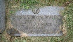 Sgt James Andrew Waliky