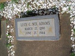 Lucy C <i>Nix</i> Adams