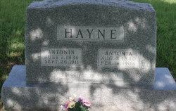 Antonin Hayne