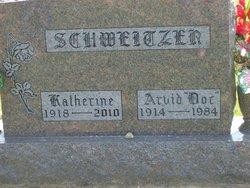 Arvid Taylor Doc Schweitzer