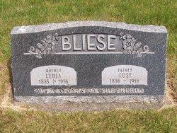 Lydia Bliese