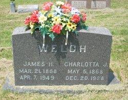 Charlotta Jane Lottie <i>Crider</i> Welch