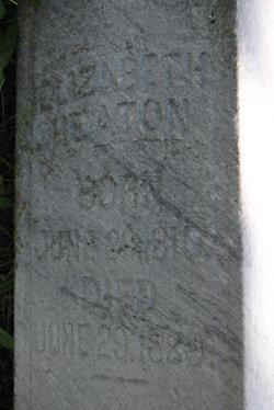Elizabeth <i>Jacobs</i> Heaton