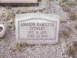 Amazon <i>Hamilton</i> Stewart