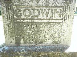 Harriett Emma <i>Stateler</i> Godwin
