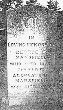 George Edward Mansfield
