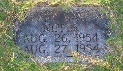 Henry Wayne Nipper