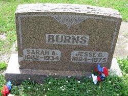 Sarah Aurabelle <i>Rowden</i> Burns