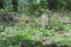 Steamburg Cemetery