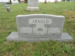 Lirena Docia <i>Custer</i> Arnold