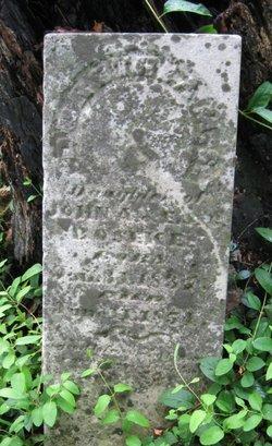 Dorotheam S. Boseke