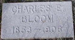 Charles Erwin Bloom