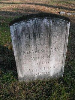 Elsie Ann Wilkin