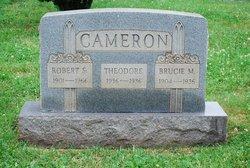 Theodore Cameron