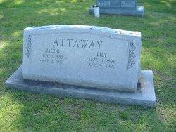 Jacob Attaway