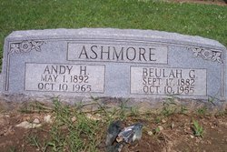 Andy H Ashmore